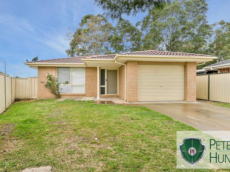 17A Theseus Circuit, Rosemeadow, NSW 2560