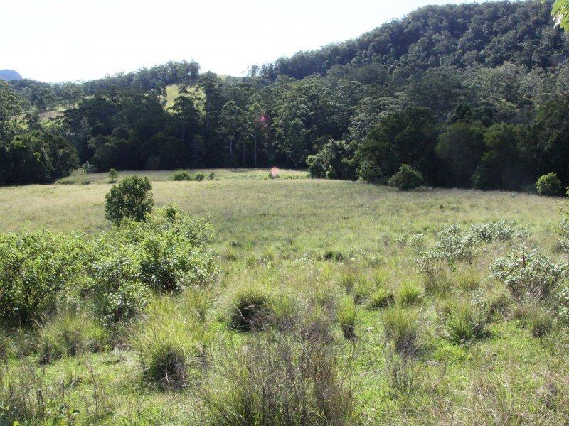100 Bishops Creek Road, Coffee Camp, NSW 2480