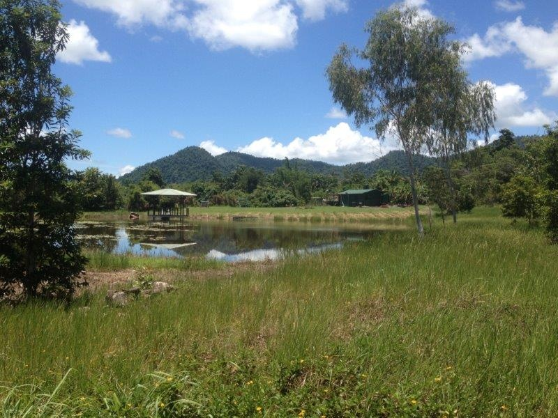 Lot 2 Shell Pocket Rd, Shell Pocket, Qld 4855