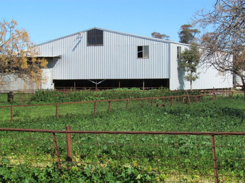 954 Mercadool Lane, Parkes, NSW 2870