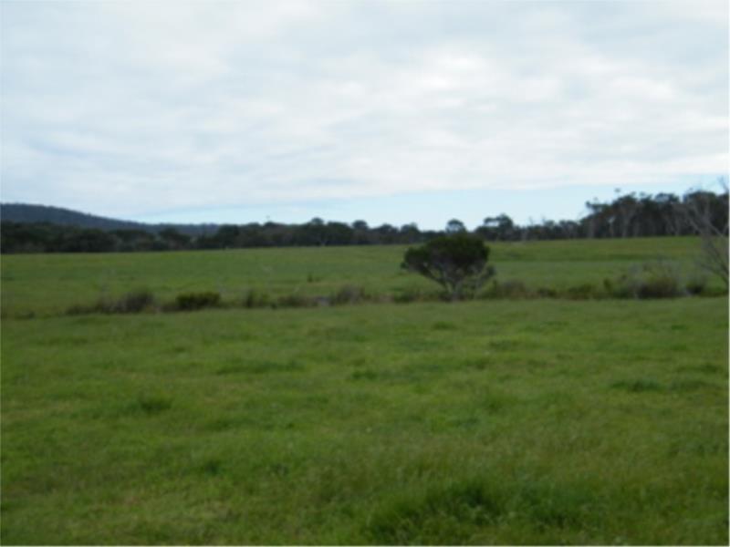 L2 Ficifolia Road, Peaceful Bay