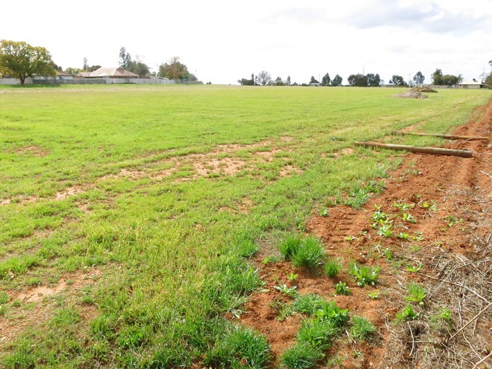 Lot 3 Yanco Road, Coomealla, NSW 2717