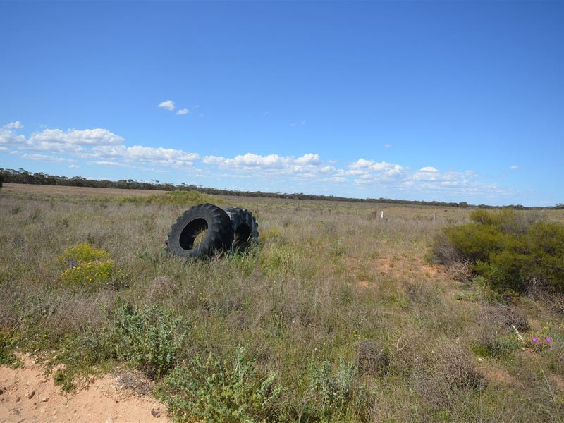 Section 3 Jim Jolly Road, Sandalwood, SA 5309
