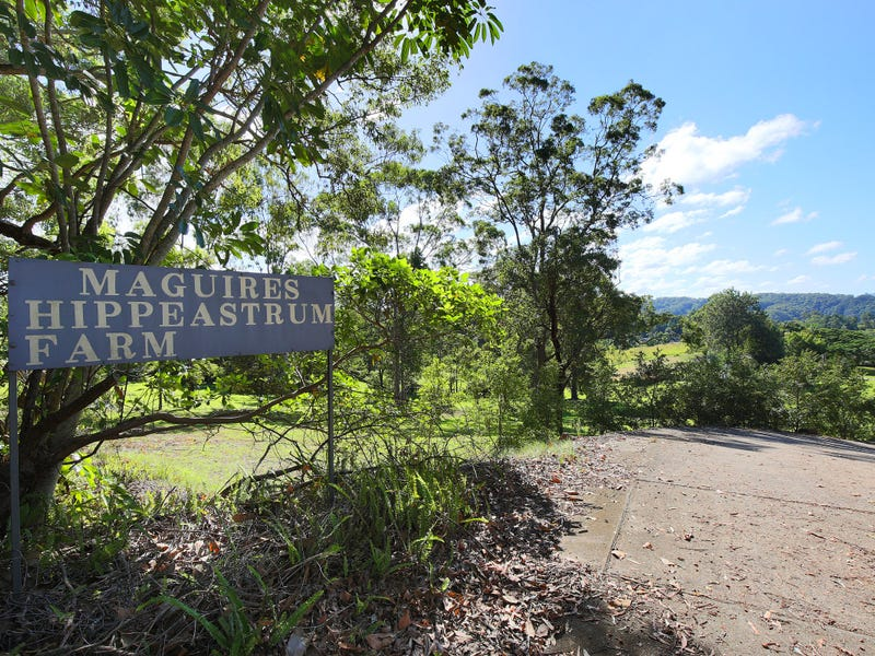 409 Kiel Mountain Road, Diddillibah, Qld 4559