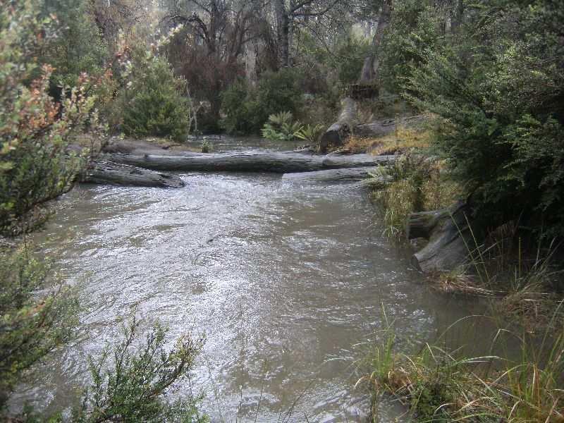 0 Gipps Creek Road, Rossarden, Tas 7213