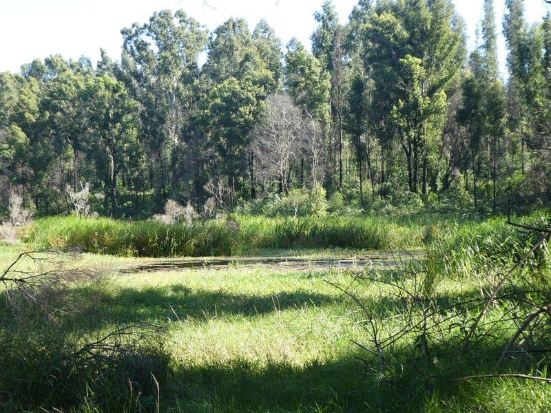 534 Phillips Swamp Road, Busbys Flat, NSW 2469