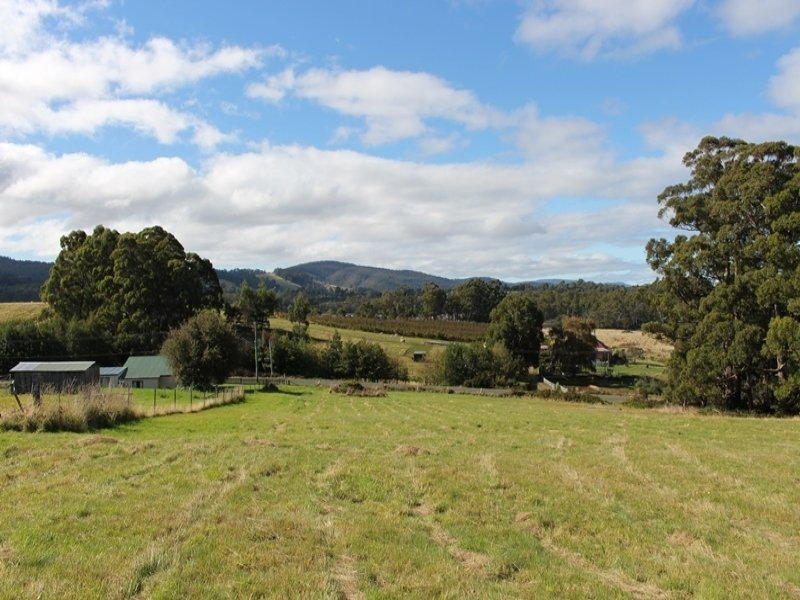 Lot 1 Narrows Road, Strathblane, Tas 7109