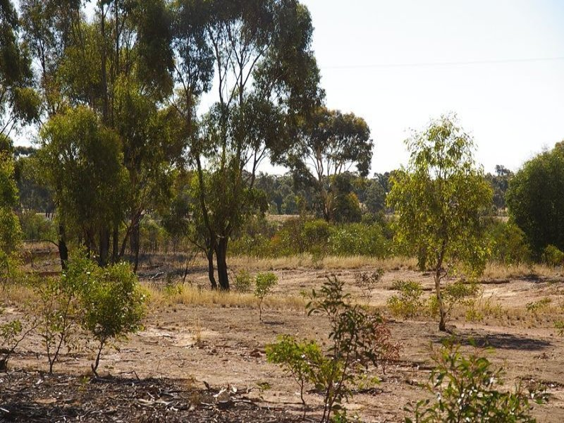 Ca278 Glenister Gap Road, Navarre, Vic 3384