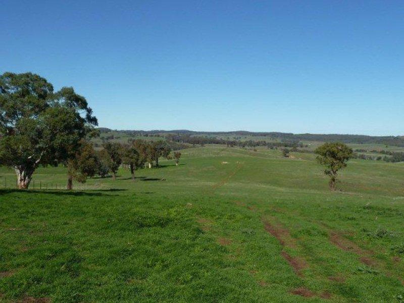 Rugby Road, Boorowa, NSW 2586