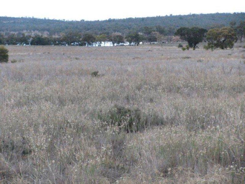 Farm 2762 McCann Road (off Lakes Road), Lake Wyangan, NSW 2680