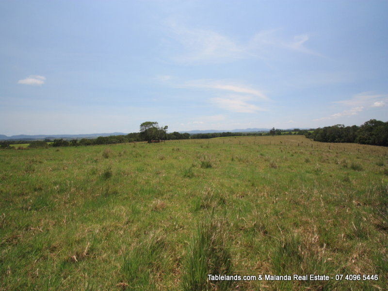 F420, 1171 Glen Allyn Road, Malanda, Qld 4885