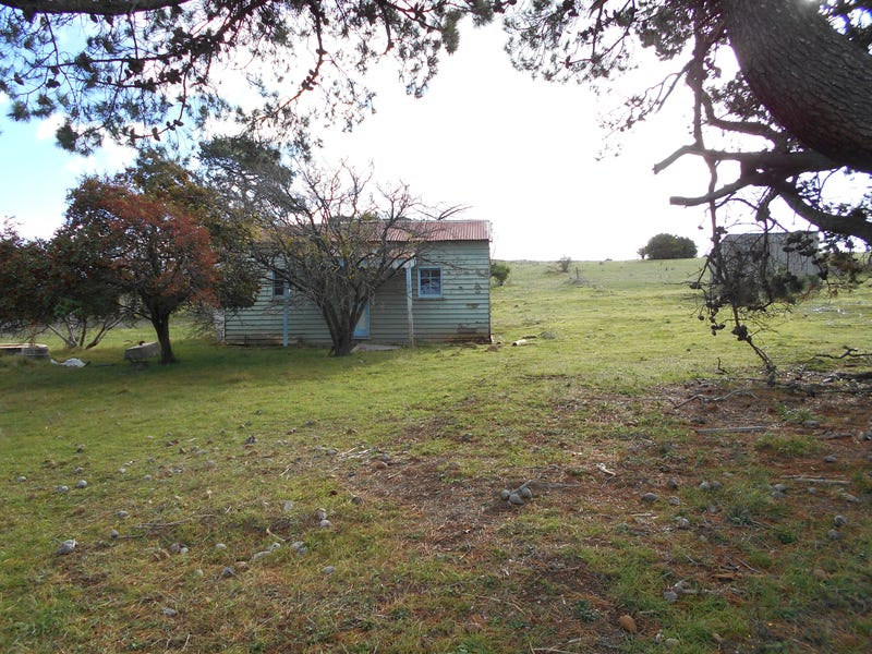8385 Midlands Highway, Tunbridge, Tas 7120