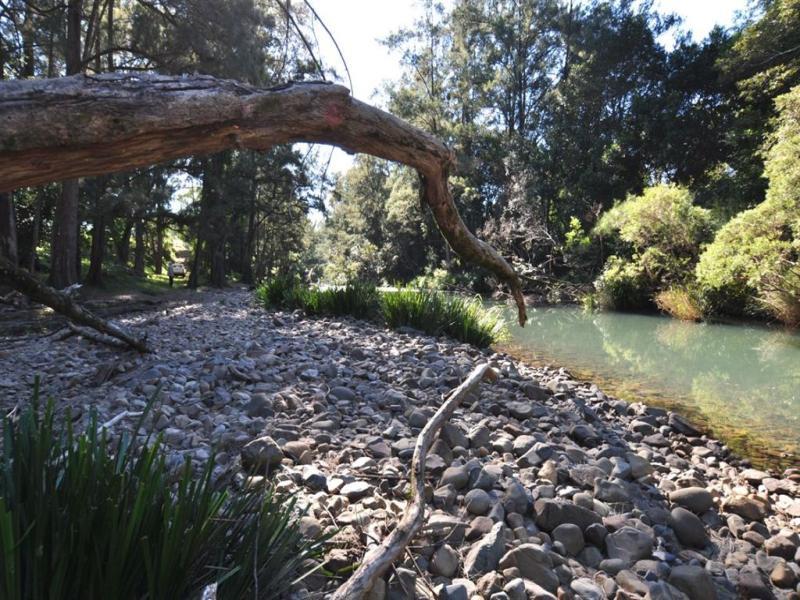 577 Pappinbarra Road, Beechwood, NSW 2446