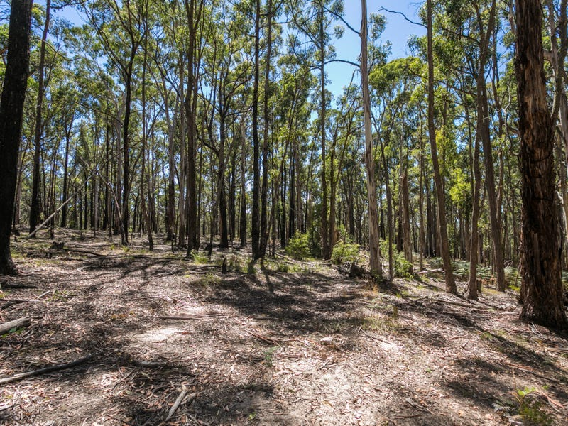 Lot 1 Pescias Hill Road, Eganstown, Vic 3461
