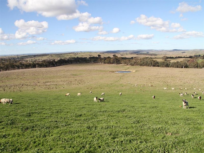 171, Flacknell Creek Road, Dalton, NSW 2581