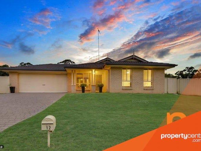 12 Lofty Place, Cranebrook, NSW 2749