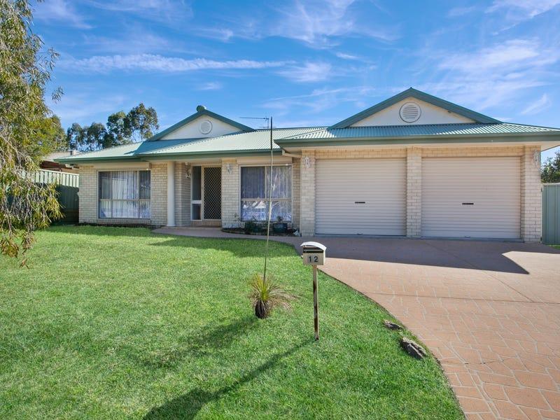 12 Ferraby Drive, Metford, NSW 2323