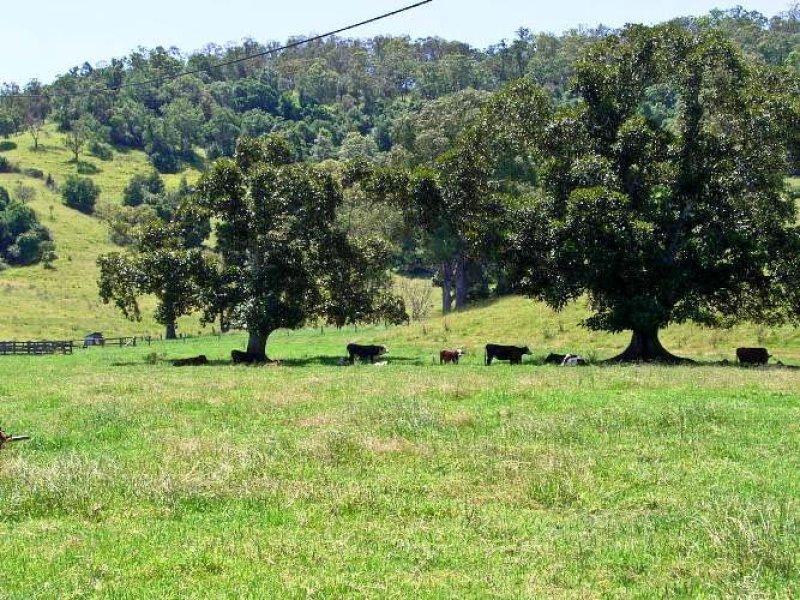49 Hicks Road, Spring Grove, NSW 2470
