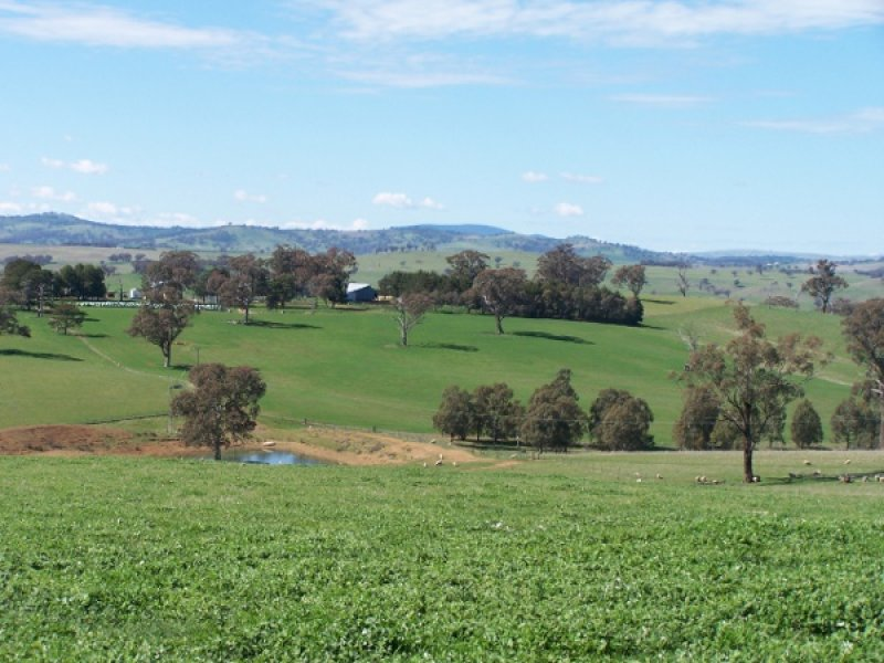 Weemalla, Four Mile Creek Road, Panuara, NSW 2800