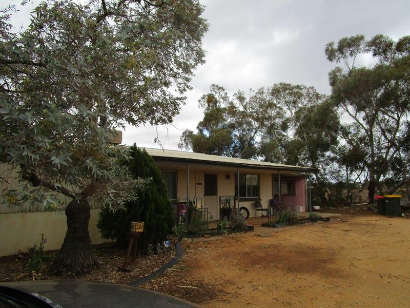 319 Caddy Road, Barmera, SA 5345