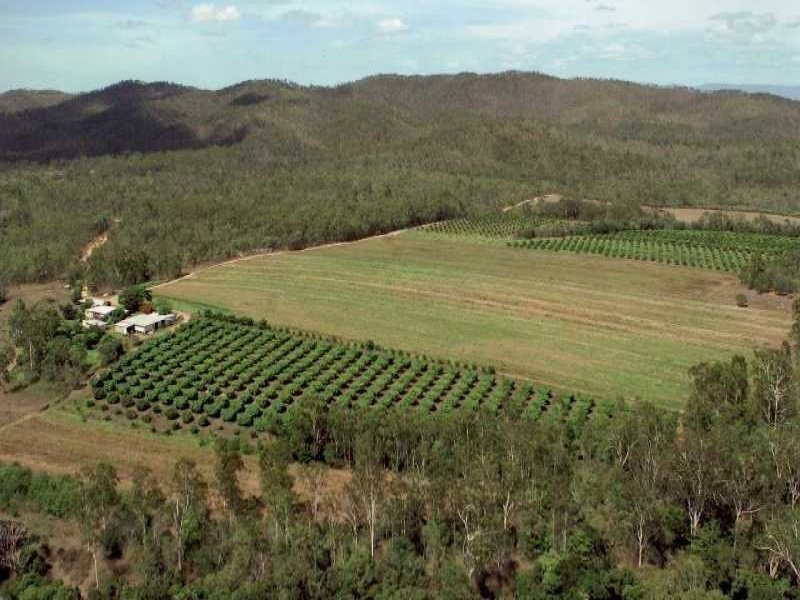 Lot 82, 270 Bolton Road, Koah, Qld 4881