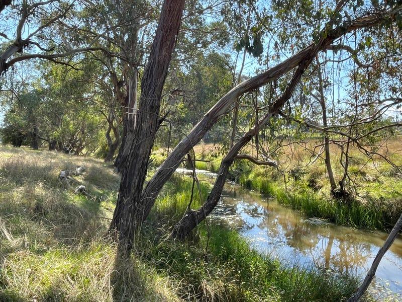 110 McEachern Lane, Rosewood, NSW 2652