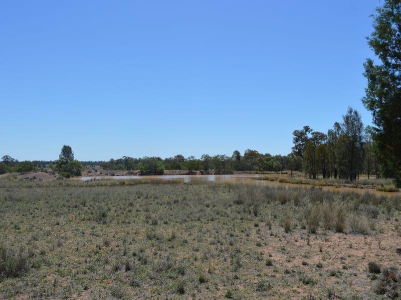 434 Drillwarrina Rd, Gilgandra, NSW 2827