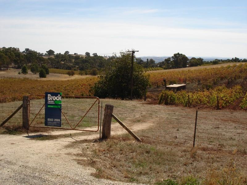 Lot 91 Hurns Road, Angaston, SA 5353