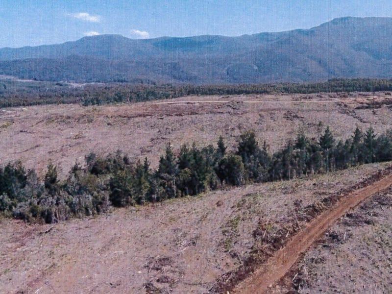 - Loongana Road, Loongana, Tas 7315
