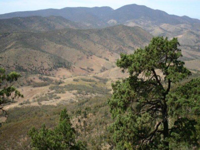 Sec 242 Devils Peak Road, Quorn, SA 5433