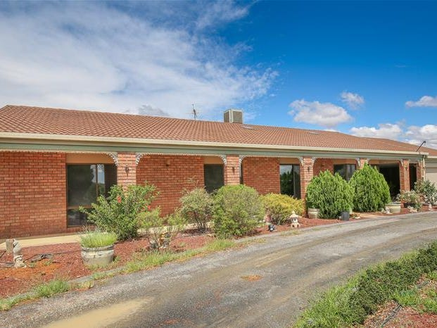 20 Gum Lane, Curlwaa, NSW 2648