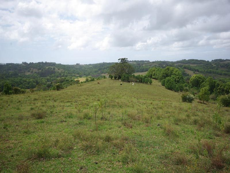 Lot 30 Friday Hut Road, Possum Creek, NSW 2479