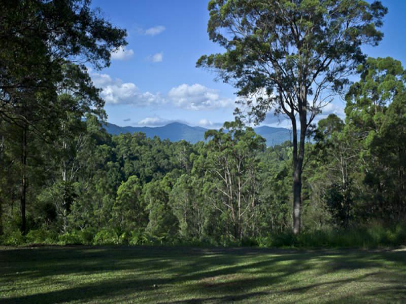 442 Mountain Top, Georgica, NSW 2480