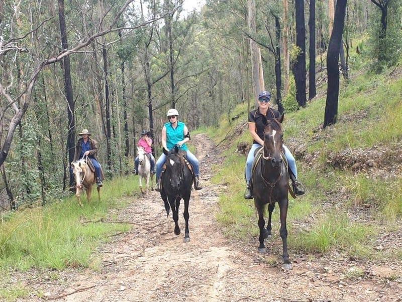 436 Maras Creek Road, Utungun, NSW 2447