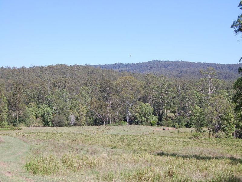 2505 Mongogarie Road, Upper Mongogarie, NSW 2470