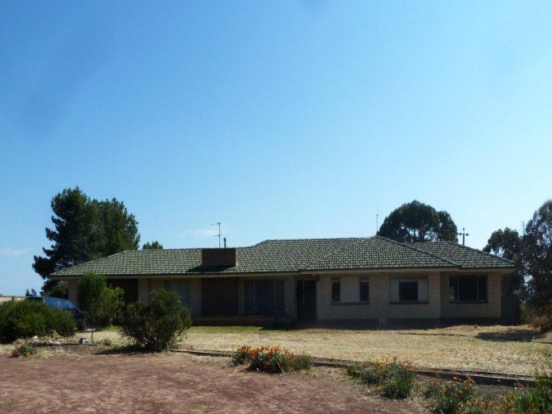 29517 Eyre Highway, Minnipa, SA 5654