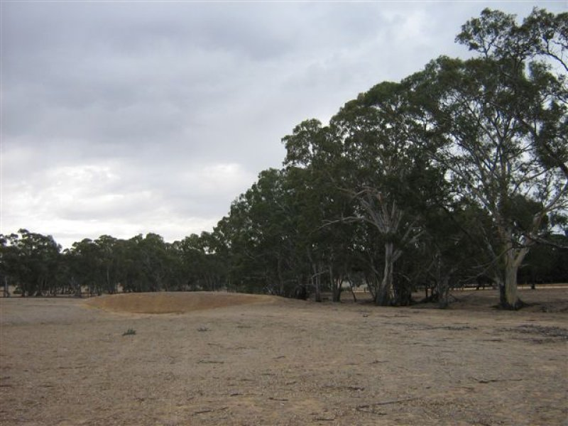 Whela Road, Cochranes Creek, Vic 3475