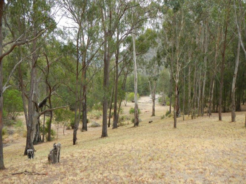 321 River Island Road, Bullio, NSW 2575