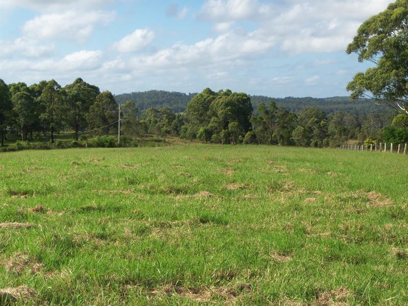 208 Bullocky Way, Failford, NSW 2430