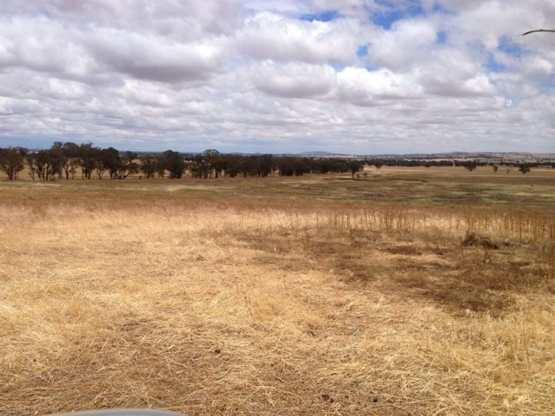 Lot 70 Crawleys Rd, Henty, NSW 2658