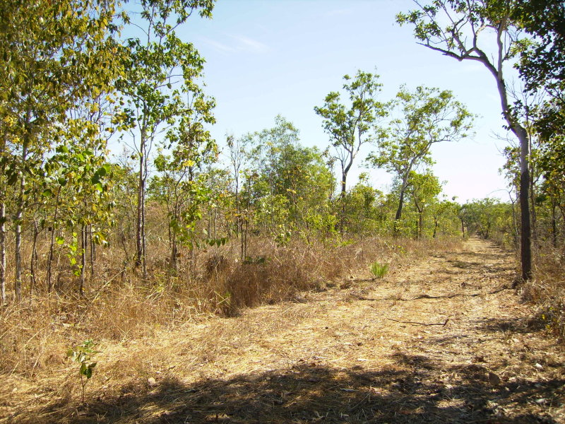 Lot 13, 1751 Leonino Road, Darwin River, NT 0841