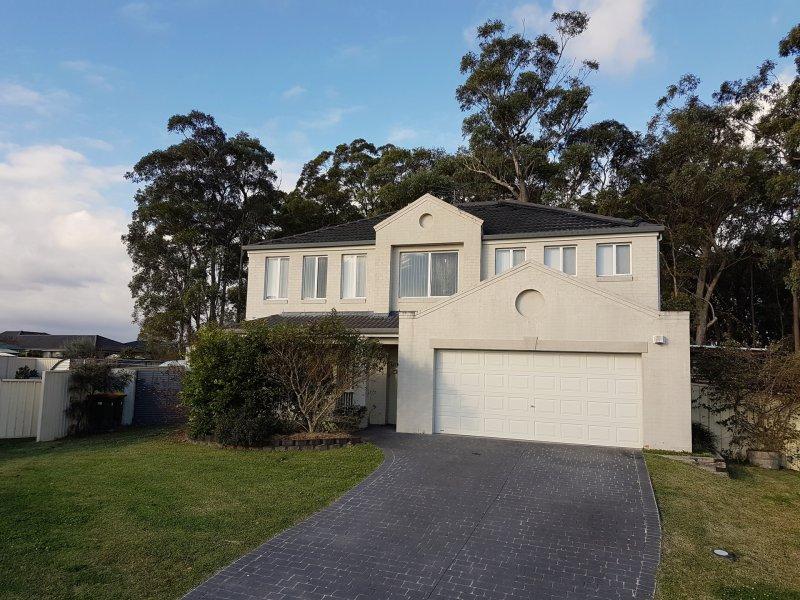 19 Silverwood Close, Medowie, NSW 2318