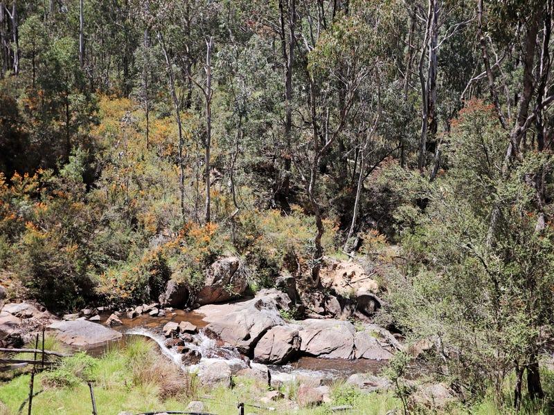 47 Fox Lane, Tumbarumba, NSW 2653