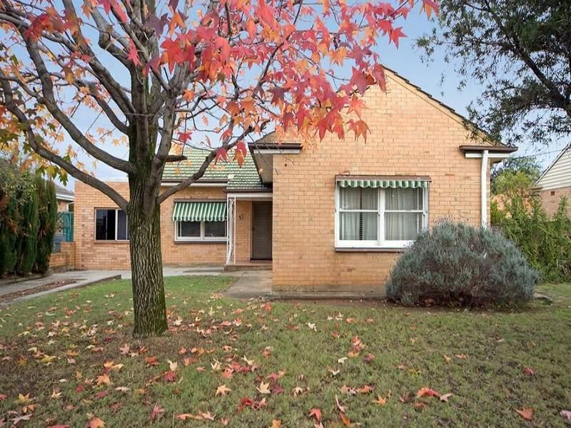 51 Mooringe Avenue, Plympton, SA 5038