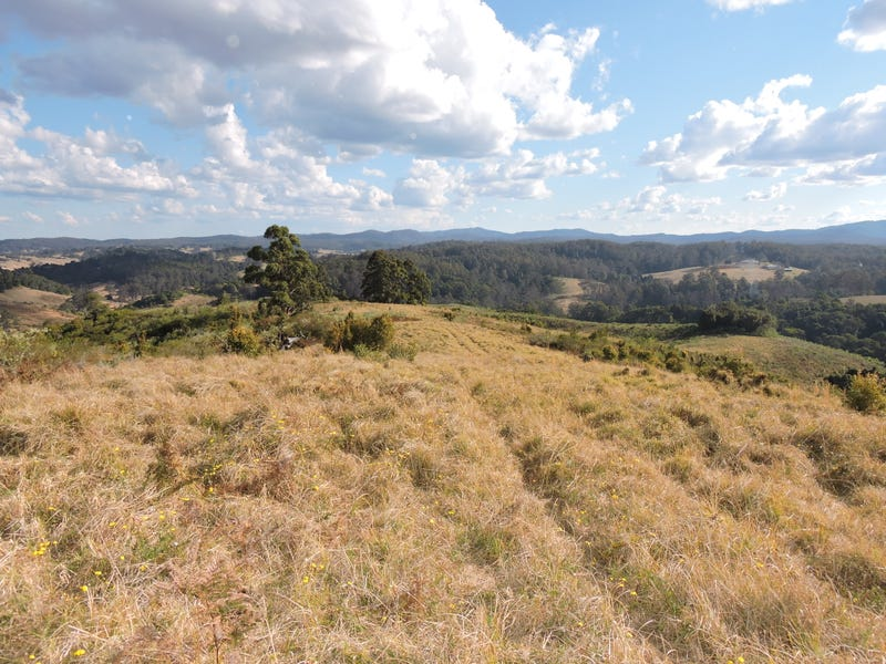 Lot 29 Tilbaroo Road, Elands, NSW 2429