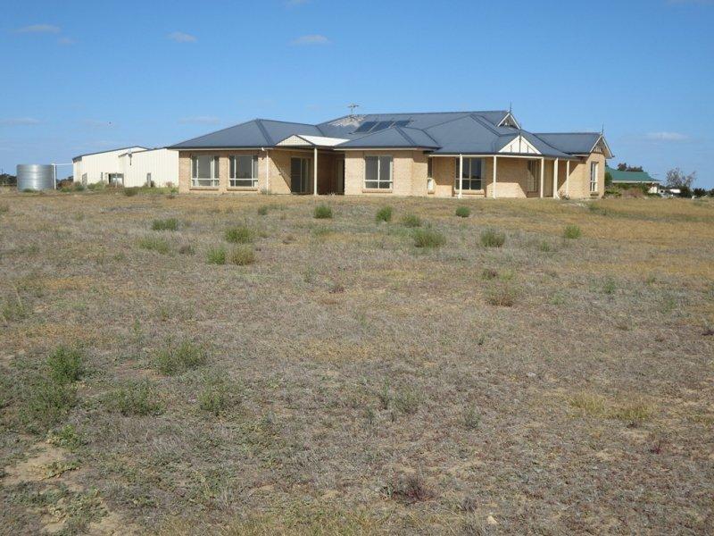 53 Bluebush Crt, Murray Bridge South, SA 5253