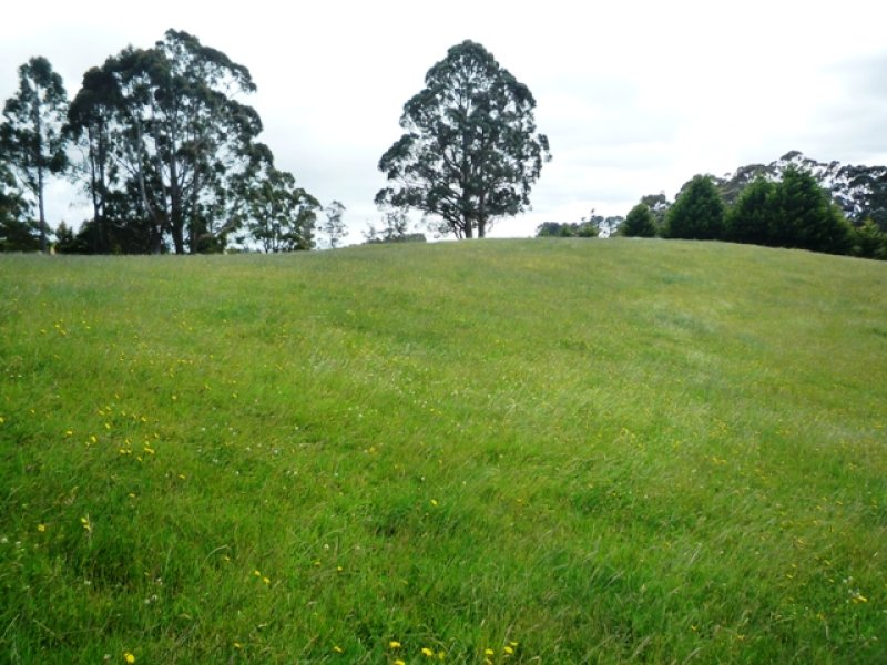 Lot 3 40 Lottah Road, Natone, Tas 7321