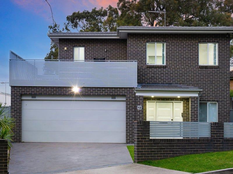 12 McAdam Place, Lalor Park, NSW 2147