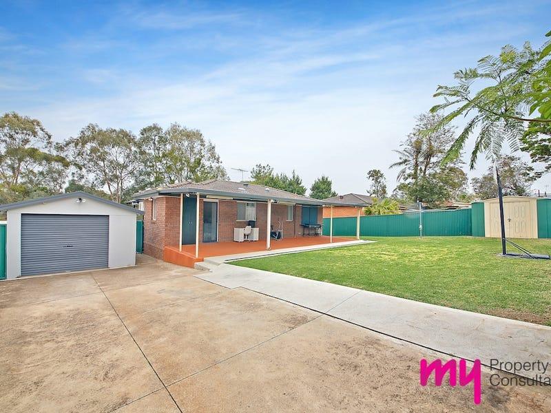 8 Chasselas Avenue, Eschol Park, NSW 2558