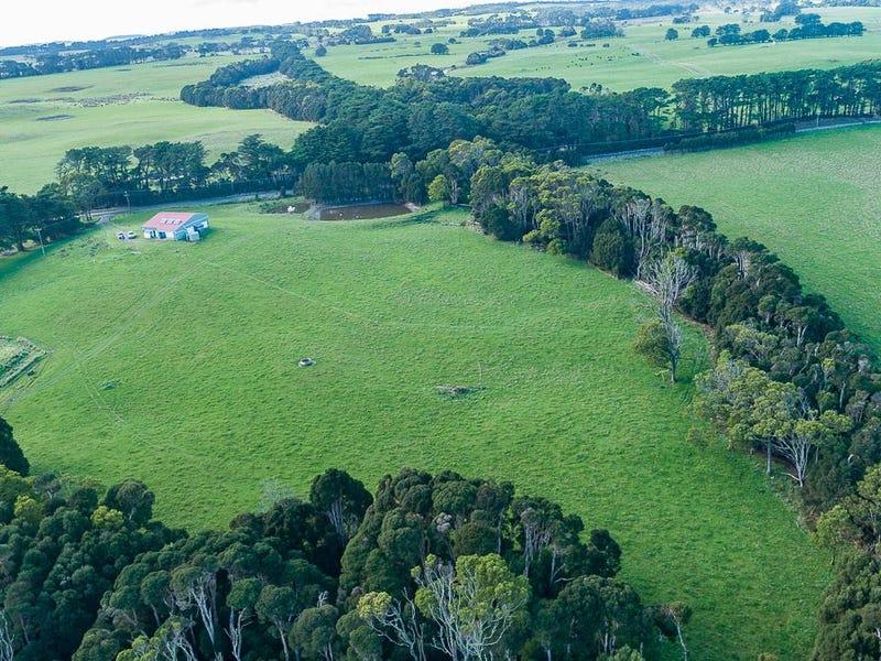 767 Mount Stanley Loop Road, Lymwood, Tas 7256